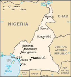 251px-Cameroon-CIA_WFB_Map