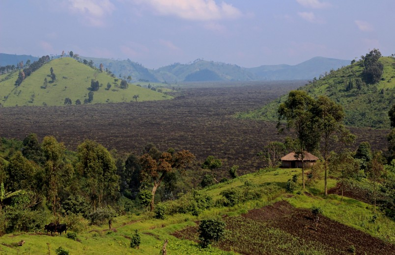 This photo taken on Tuesday, Jan. 27, 2015, shows a large area of natural forest that has been burnt down on a yearly basis to make charcoal near the village of Mweso, Democratic Republic of Congo. Many hope the elimination of the FDLR will create stability not only in eastern Congo but in Rwanda, where the government has long been accused of backing rebels who fight the FDLR. The FDLR, though, also have become an integral part of the region's economy, running the illegal charcoal trade that provides thousands of households with fuel to cook and heat their homes despite causing deforestation. (AP Photo/Melanie Gouby)
