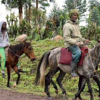 #FreeBekele: protests continue in Ethiopia