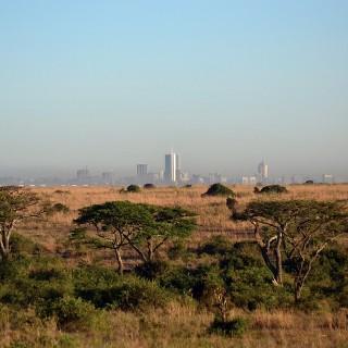 Kenya: security woes continue