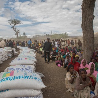 Study questions food scarcity link in driving African conflict