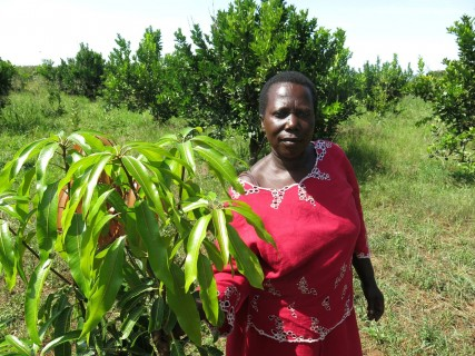 36 year old Beatrice Rukanyanga takes a walk in her fruit tree garden, Hoima district, Uganda