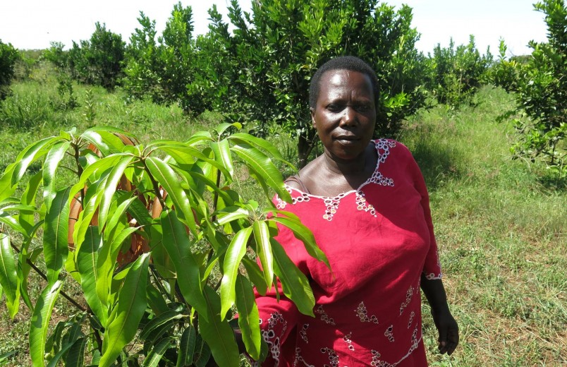How one women's group is fighting climate change in Uganda