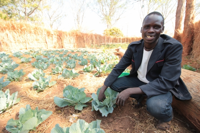 Zambia, Malawi farmers develop resilience to climate impacts