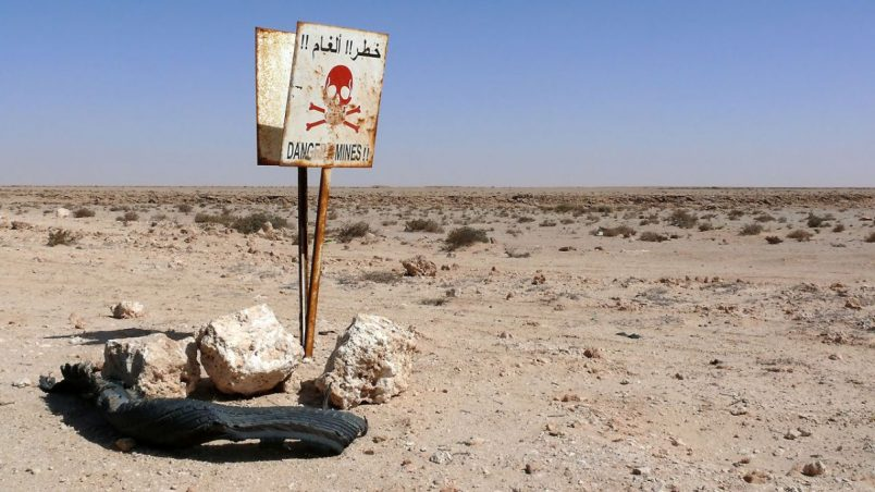 Algeria completes decades-long landmine removal along its borders