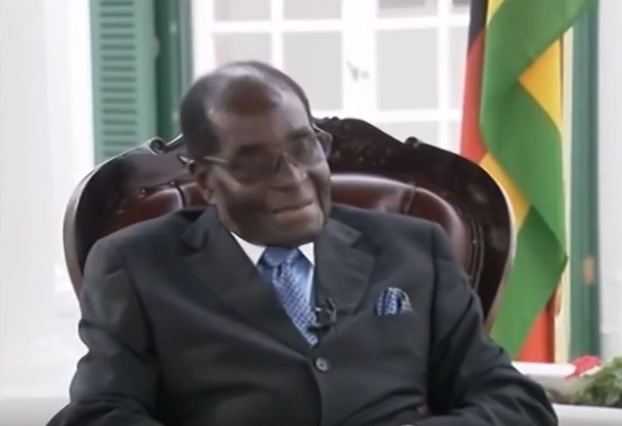 Zimbabwe's Mugabe makes a birthday pitch for his wife's political skills