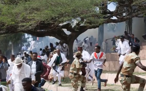 Ethiopia: Report on protest deaths blames Oromo opposition, media