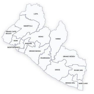 Liberia court ruling postpones Tuesday's runoff, calls for inquiry
