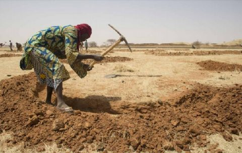 Report focuses on preventing North African drought