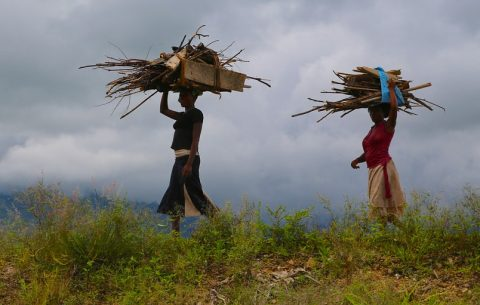 Report on climate resilience urges help for sub-Saharan Africa