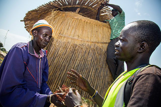 Conflict and climate hit South Sudan crops, spike food prices