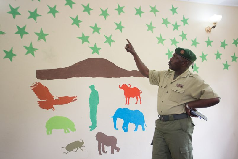 DRC: Six rangers ambushed at Virunga National Park