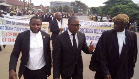 American lawmakers speak out on Cameroon as lawyer's trial looms