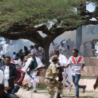 Ethiopia: Report on protest deaths blames Oromo opposition, media
