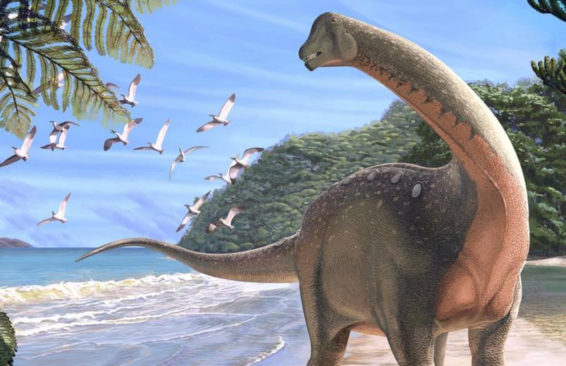 Paleontologists find new dinosaur species in Sahara