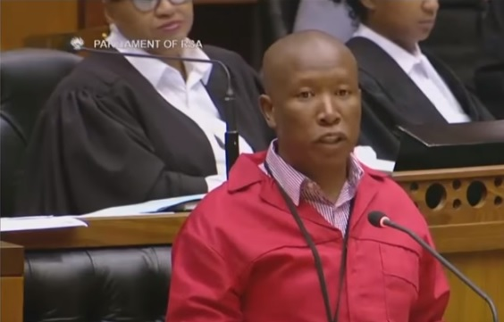DA vows to take South Africa's Malema to court over 'hate speech'