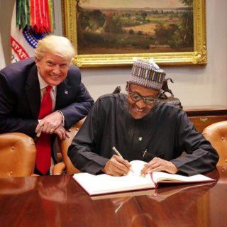Nigeria: Buhari, Trump talk trade and counterterrorism