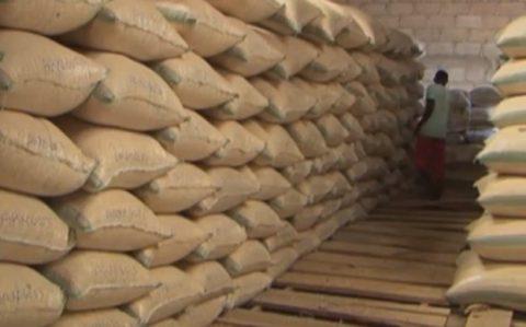 Buhari visit to Morocco puts focus on Nigeria's fertilizer industry