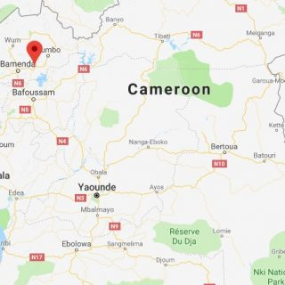 At least 160 inmates free after Cameroon prison attack