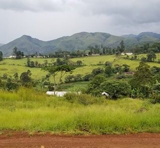 U.S. officials confirm death of missionary in Cameroon