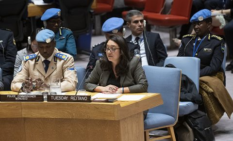 Security Council briefing focuses on DRC militant-organized crime link