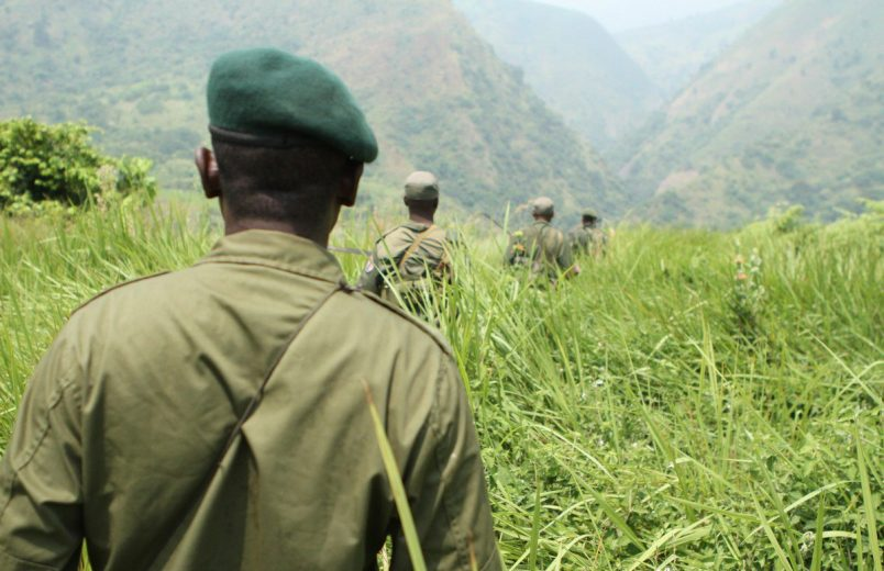 Latest Virunga attack claims six ranger lives