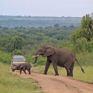 Pompeo declines comment on U.S. tourist abduction in Uganda