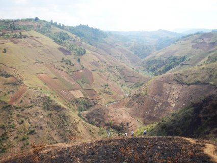 DRC research adds new insights on deforestation, carbon release