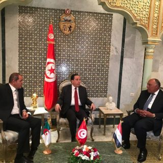 Egypt joins Algeria, Tunisia in pressing for Libyan ceasefire