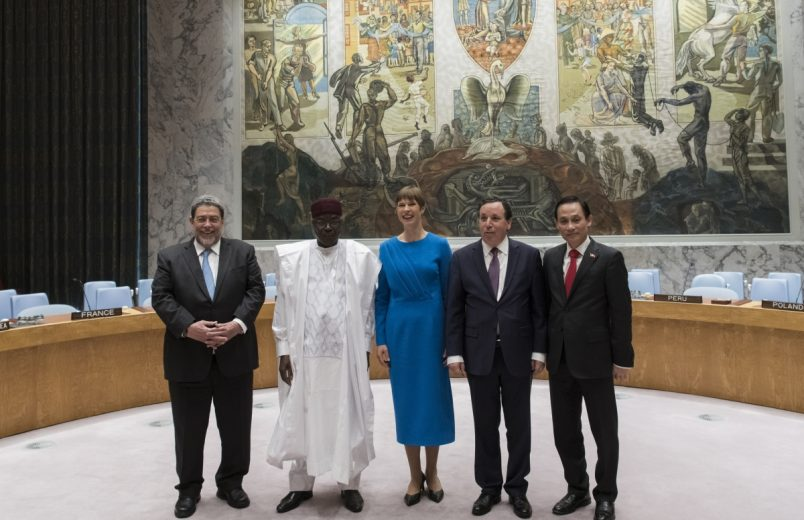 Niger, Tunisia elected to UN Security Council seats