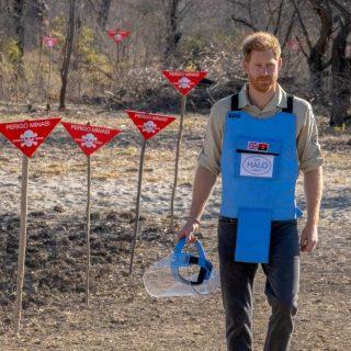 Prince Harry raises landmine awareness in Angola