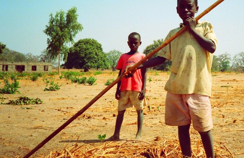 Africa must follow Senegal's lead and ensure rural communities are not forgotten