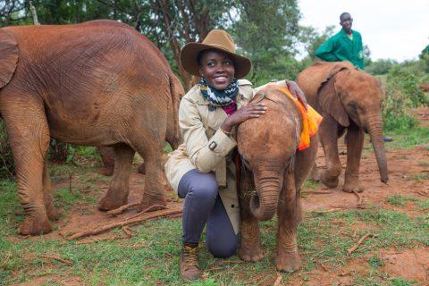 Lupita Nyong'o tapped for wildlife advocacy award