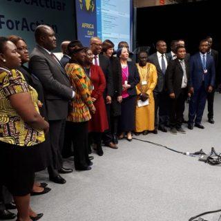 AfDB: Despite COP25 failure, Africa must press forward on climate