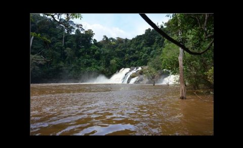 Liberia gets $35 million in renewable energy funds