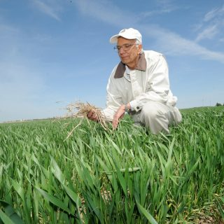 2020 World Food Prize goes to soil health expert