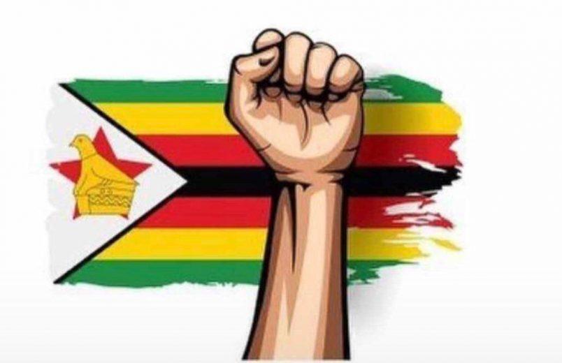 Social media campaign targets Zimbabwe crackdown on anticorruption activists