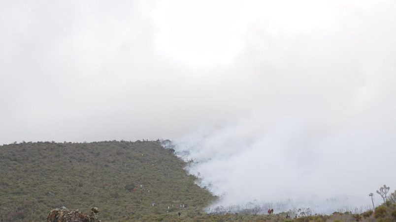 Kilimanjaro: Fire breaks out on Africa's tallest mountain