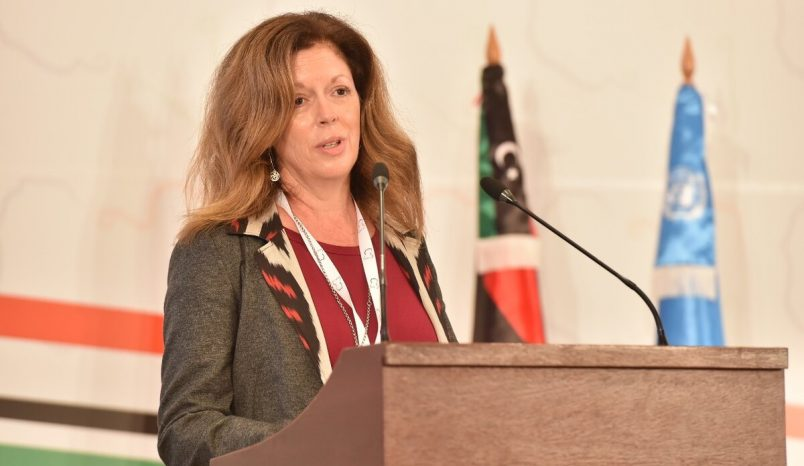 UN rep in Libya keeps focus on harsh realities at LPDF