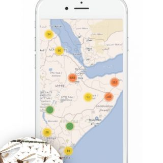 Kenyan firm offers farmers AI-based locust monitoring tech