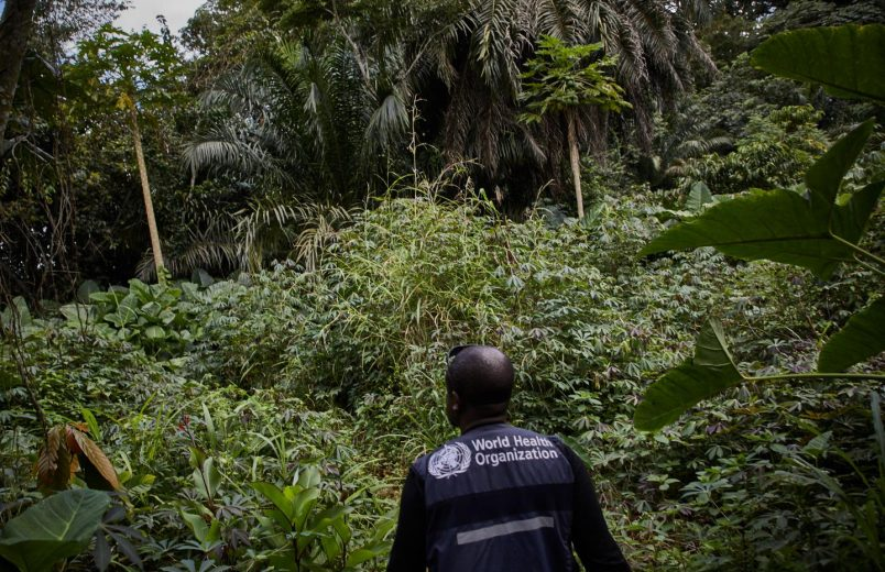 New Ebola cases suspected in West Africa's Guinea