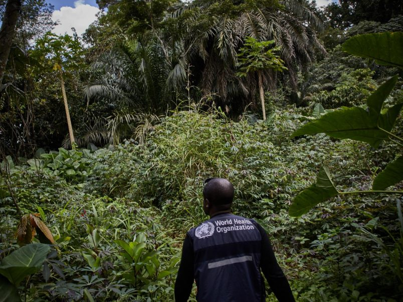 WHO works to trace 70+ contacts of new Ebola case in DR Congo