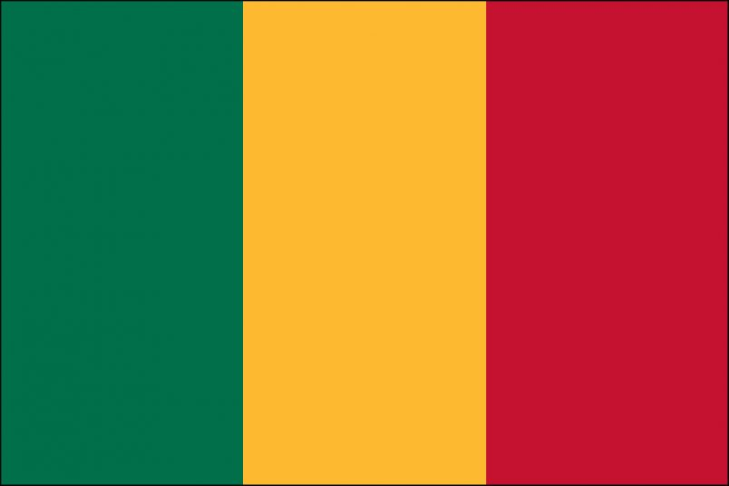 African Union, ECOWAS suspend Mali over coup