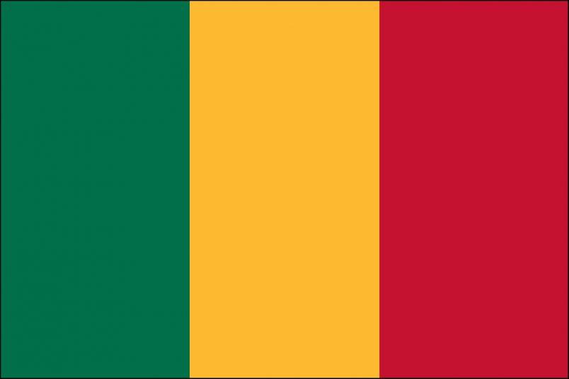 Report: Mali's Bah N'Daw resigns during ECOWAS meeting
