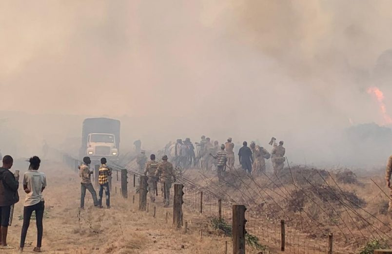 Kenyans sue British Army over wildfire damage near training site