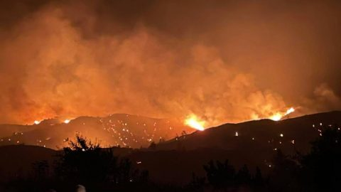 Cyprus wildfire: Rights groups call for inquiry in Egyptian worker deaths